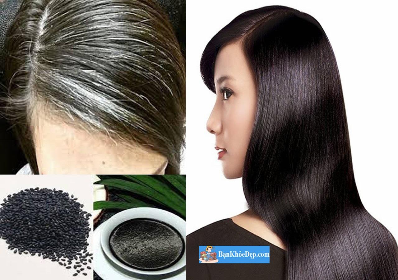 chữa tóc bạc sớm bằng đậu đen